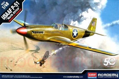 USAAF P-51 North Africa (Limited Edition)