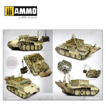 Panthers – Modelling the TAKOM Family (English)