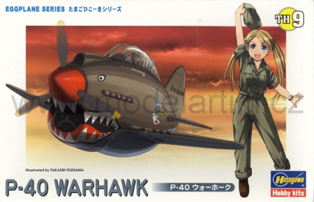 P-40 Warhawk (Egg Plane) 007/TH09