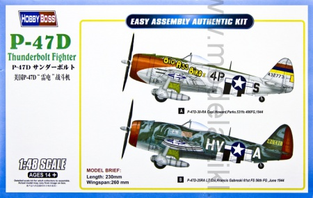 Republic P-47D Thunderbolt 008/85804