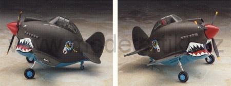 P-40 Warhawk (Egg Plane)